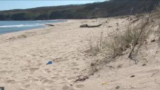 Отдават под наем един от последните диви плажове