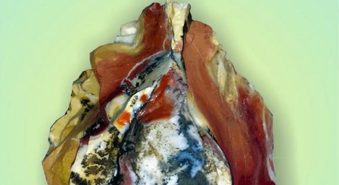 В София ще се проведе великденско изложение на минерали, фосили и скъпоценни камъни