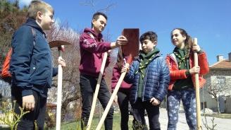 Варненските скаути засадиха дръвчета в Аксаково