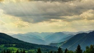 Нови 15 000 дка гори ще бъдат залесени само в държавните горски територии