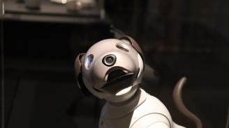 """Крачещият робот """"Голямата стъпка"""" ще представят пред ученици учени от Института по роботика на БАН"""