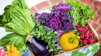 Единствено витамините и минералите в растителната храна предпазват от преждевременна смърт