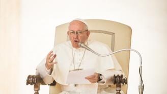 """Папата призова завсеобща мобилизация завъзстановяване на катедралата """"Нотр Дам"""""""