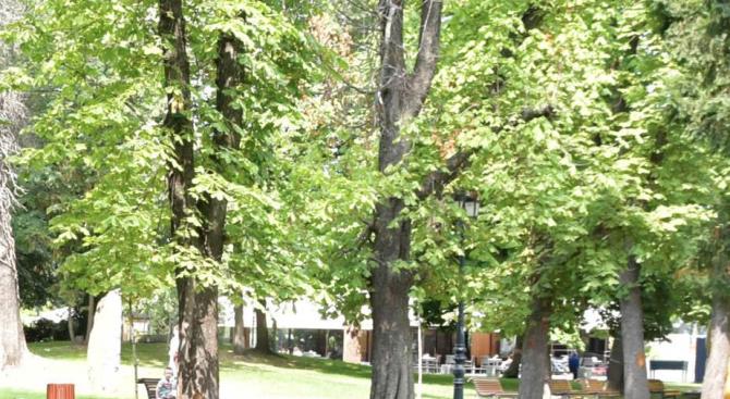 Доброволци почистват Борисовата градина