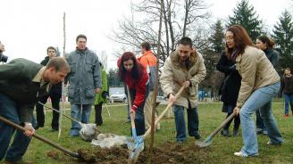Учени от БАН ще засадят 150 дървета за Деня на Земята