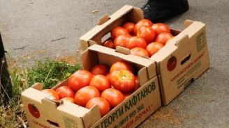 Въвеждането на обратното начисляване на ДДС ще удари нелегалния внос на домати