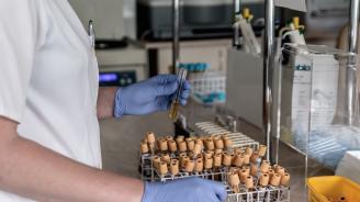 Учени създадоха антибиотик срещу рак