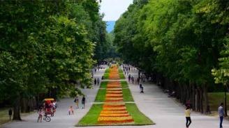 1716 дка улици и тротоари са измити във Варна през април