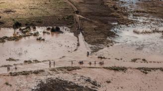 Циклонът Фани отне живота на най-малко осем души в Индия