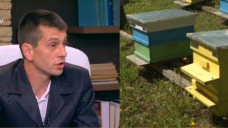 Пчелар: Българският мед не се изнася в чужбина, защото при анализ в него има глифозат