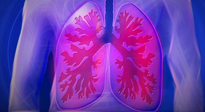 В България са диагностицирани само 50% от астматиците. Това съобщиха