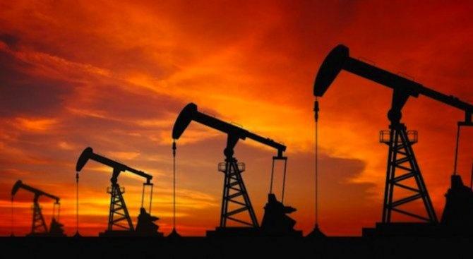 Иранският износ на петрол е намалял този месец до 500