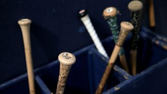 """Неизвестни подхвърляха и пребиха с бухалки куче в Мексико, използвали го като """"топка"""" за бейзбол"""