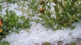 МЗХГ: Сформирани са комисии за оценка на щетите от градушката в Карлово и Нова Загора
