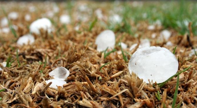 Огромни са щетите на земеделските стопани в община Левски -