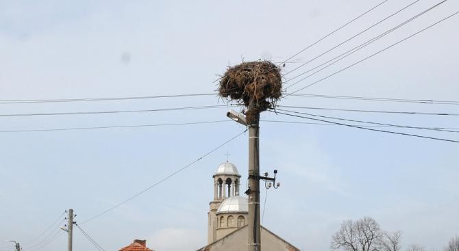 """Стартираха теренните проучвания по проект """"Живот за птиците"""", изпълняван от"""