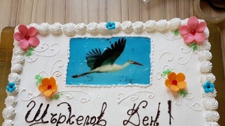 """В Разград осиновители и децата им отпразнуваха заедно """"Щъркелов ден"""""""