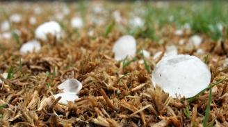 40 хил. дка със земеделски култури са засегнати от градушката в Ловешка област