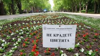 В Морската градина на Варна разкрасяват с цветни алеи