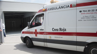 5 деца пострадаха при катастрофа с училищен автобус край Мадрид