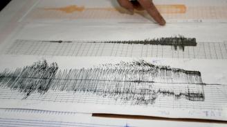 Земетресение с магнитуд 4,6 по Рихтер е регистрирано край турския курорт Бодрум