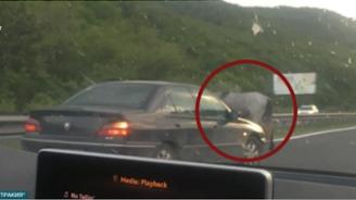 """Шофьорите по магистрала """"Тракия"""" на нокти заради изникващи на пътя коне"""