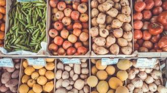 """ДФ """"Земеделие"""": Още 3 млн. лева получиха стопаните по схемите за плодове и зеленчуци за Кампания 2018"""