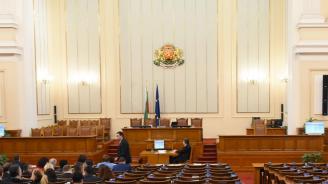 Депутатите избраха Мария Белова за председател на Комисията по земеделието и храните