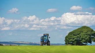 До 10 юни земеделските стопани могат да извършват промени без санкция във вече подадените заявления по директните плащания