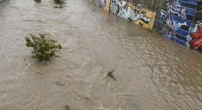 """По информация на Изпълнителната агенция """"Проучване поддържане на река Дунав"""