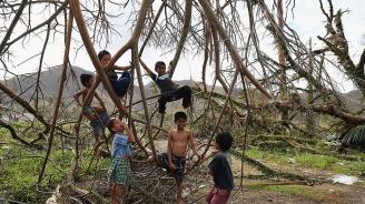Учениците във Филипините трябва да засадят 10 дървета преди да завършат