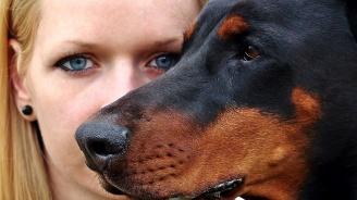 Куче отхапа част от устната на 35-годишна жена в Разградско