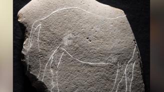 Археолози откриха праисторическа плоча с гравирани коне