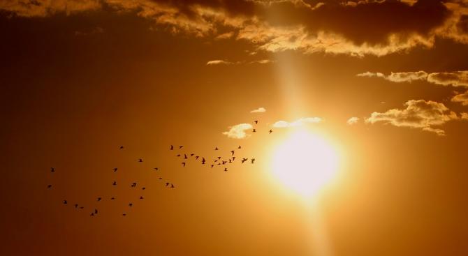 Ще е предимно слънчево с временни увеличения на облачността. На