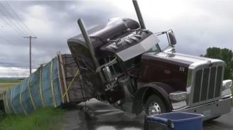 Милиони пчели се разлетяха от обърнал се камион в Монтана