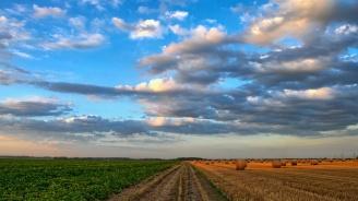 Цената на декар земеделска земя скочила с 8% за година