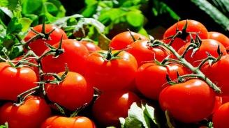 Производители искат строг контрол за вносните зеленчуци