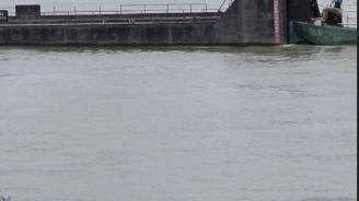 Нивото на река Дунав се е понижило при Свищов