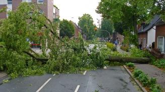 20 ранени от бурните ветрове и гръмотевичните бури в Източна Германия