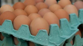 29 258 кг храни са изтеглени и насочени за унищожаване през май