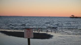 Прогнозираха поява на гигантска мъртва зона в Мексиканския залив