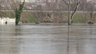 Опасност от екологична катастрофа с Тунджа край Ямбол