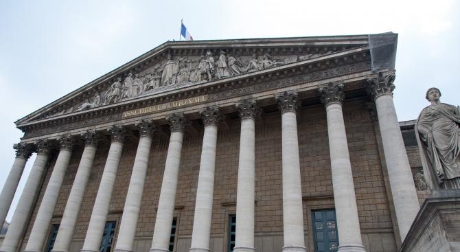Френски депутати започват война срещу масовото изоставяне на домашни животни