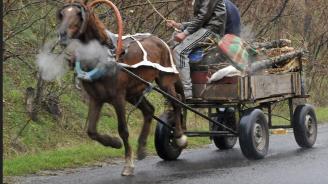 Катастрофа между кола и каруца на пътя Арчар – Ярловица, има пострадал