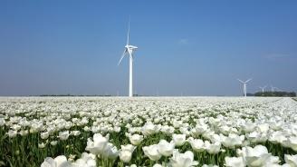 Холандското правителство представи мерки за съкращаване на въглеродните емисии