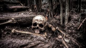 Откриха човешки останки край Козловец