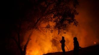 Големи горски пожари все още бушуват в Испания и Германия