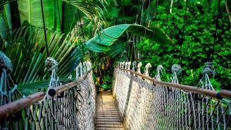 Тайланд въвежда задължителна туристическа застраховка