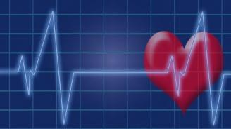 Жега удари и България! Вижте няколко ценни съвета как да пазим сърцето си
