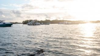 27 души загинаха при потъване на рибарски кораб край бреговете на Хондурас
